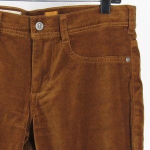 Pilcro and the Letterpress Velvety STET Fit Pants